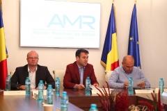 AMR-CD-29